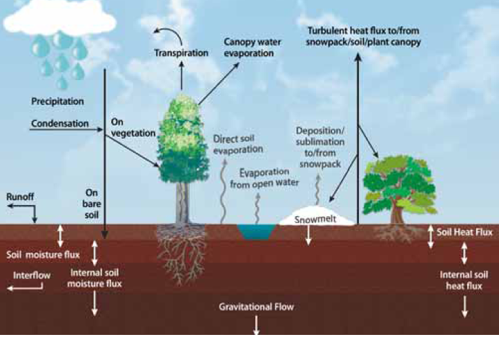 Representation of the water cycle, including soil moisture processes.